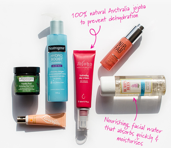 Dry Skin Type Product Guide